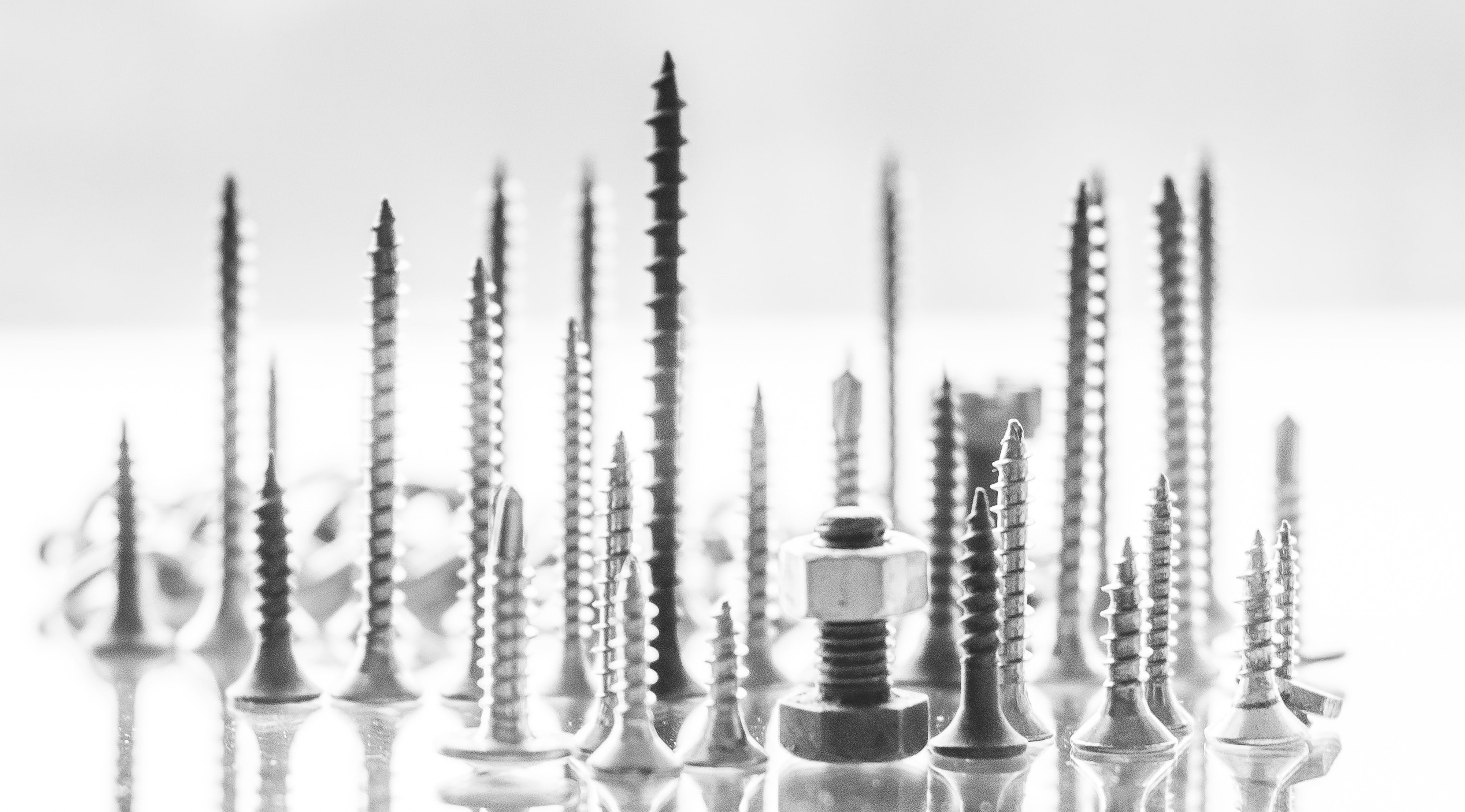 fasteners, screws and bolts